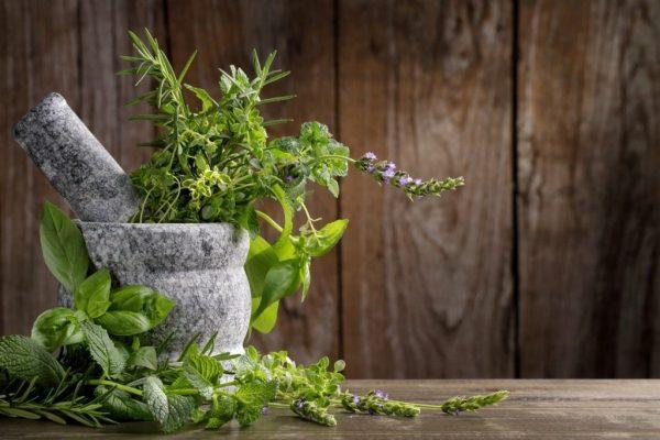 01-herbs