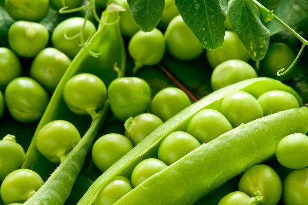 6-zelenyj-goroshek-polza-i-vred-1