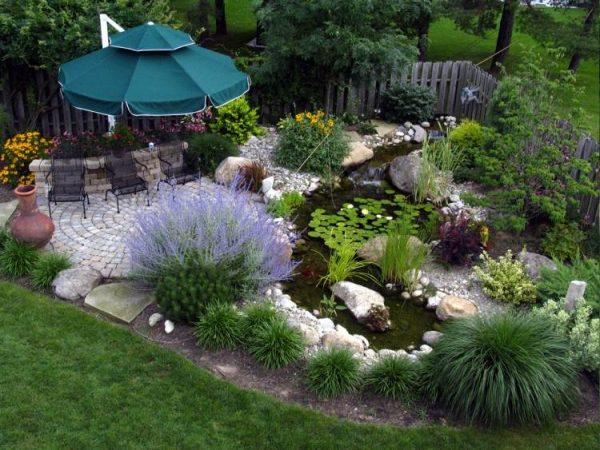 comment-faire-jardin-aquatique-gramin-es