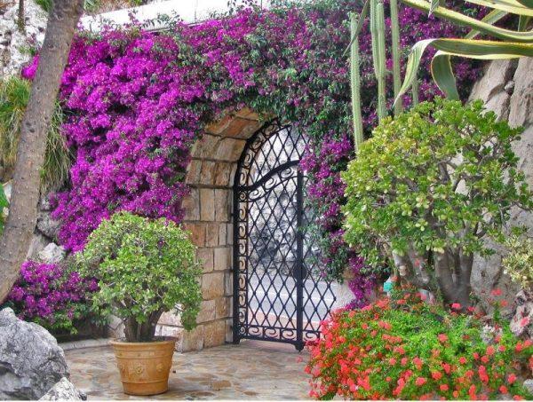 floral-patio-in-cordoba-32