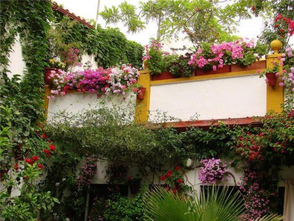 patio_Ispaniya-Kordovavnutrennie-dvoriki-patio_10-