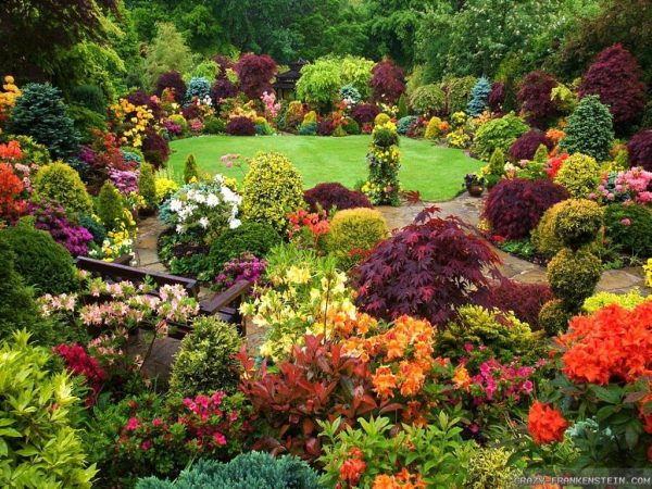 amazing-flower-gardens-images-about-beautiful-on-pinterest-four-seasons-garden-the-most-home