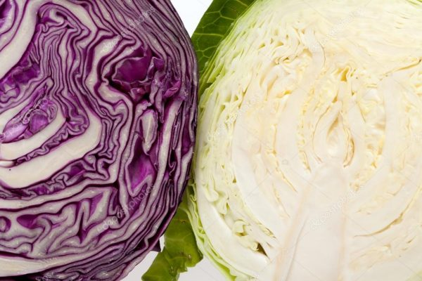 depositphotos_13088797-stock-photo-white-and-red-cabbage-cross