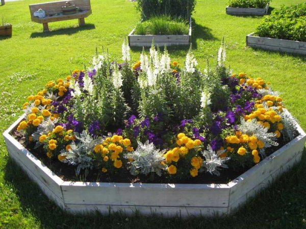 elegant-easy-flower-garden-for-beginners-flower-gardening-made-flower-gardening-for-beginners-l-bcd4c2066657873f