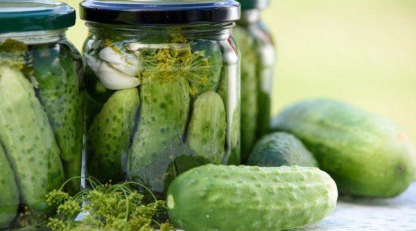 pickled-cucumbers-1520638_1280-800x445