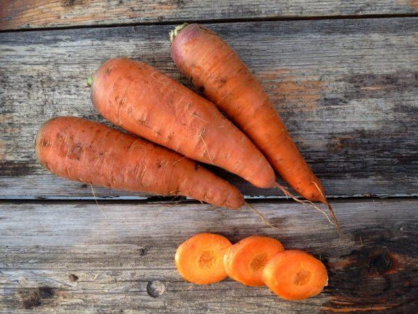 Vazhno-pravilno-vybrat-sort-morkovi-dlya-hraneniya-zimoj