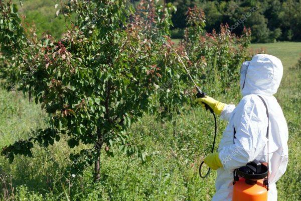 depositphotos_93296784-stock-photo-pesticide-spraying-fruit-tree-spraying