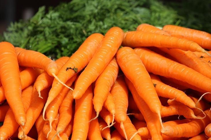 Картинки по запросу Подкормите овощные культуры морковь