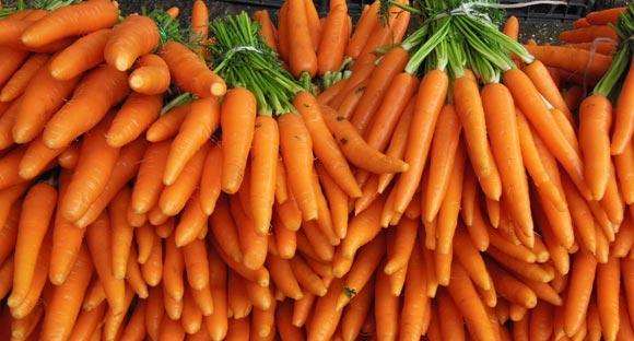 morkov-polza-vred-1