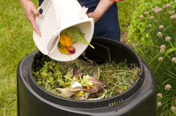 picture_gid-po-kompostu-v-dom_283_s1