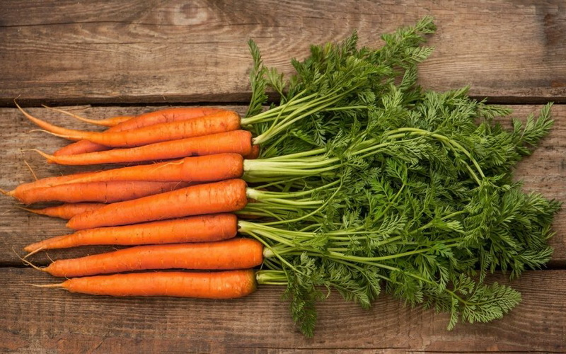 Картинки по запросу Способы длительного хранения овощей и фруктов