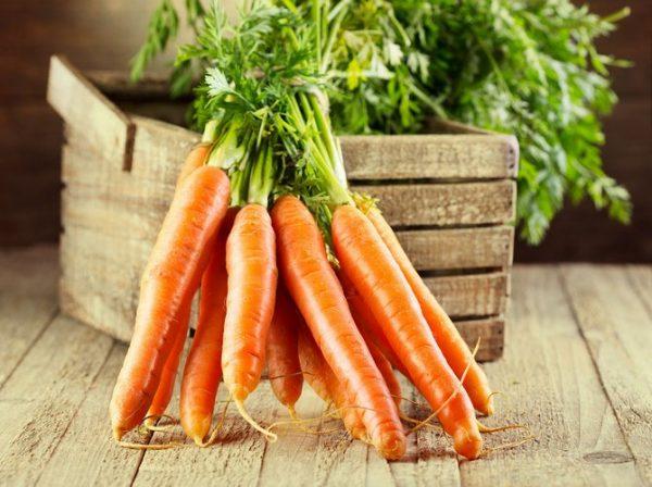 morkov_hranenie