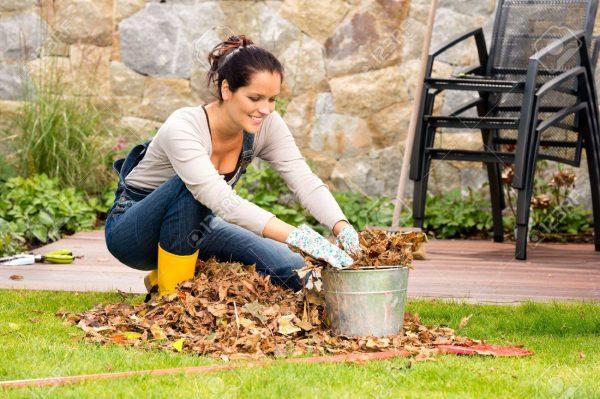 22144328-femme-souriante-farce-feuilles-s-ches-dans-le-seau-automne-m-nage-de-jardin