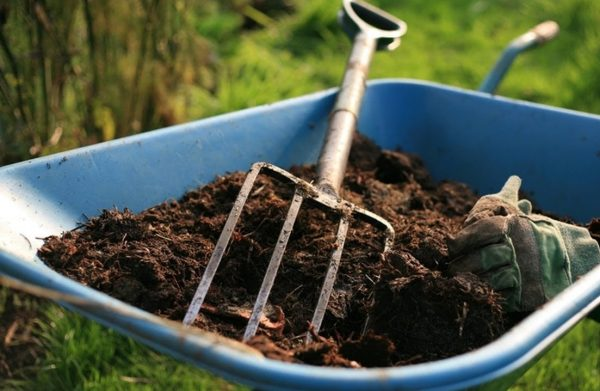 Kompost-2