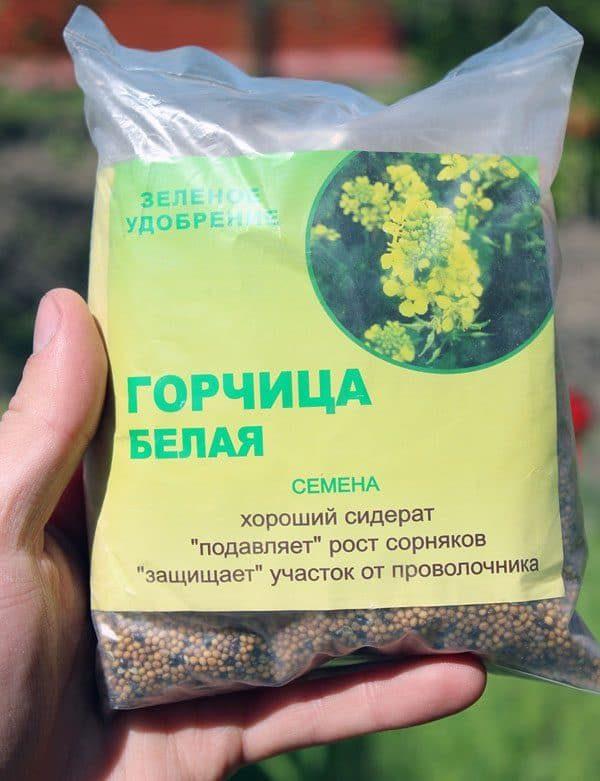 gorchica_belaya_siderat_250_gr-600x781