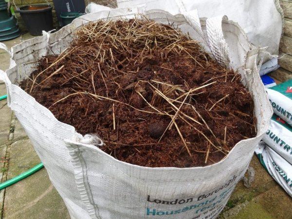 horse-manure-3-2