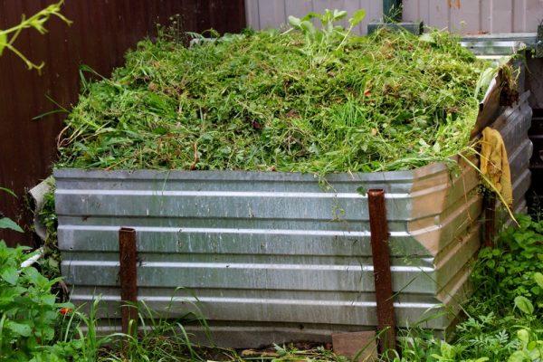 kompost_800