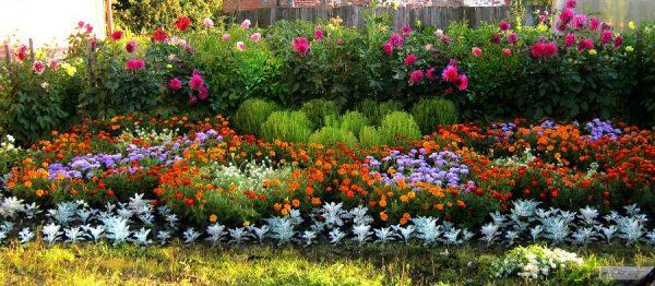 sozdanie-cvetnikov