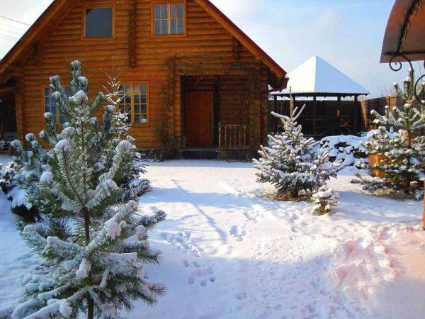 content_content_solnechogorie-ru-uchastki-zimoy