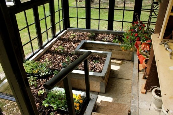 greenhouse_03
