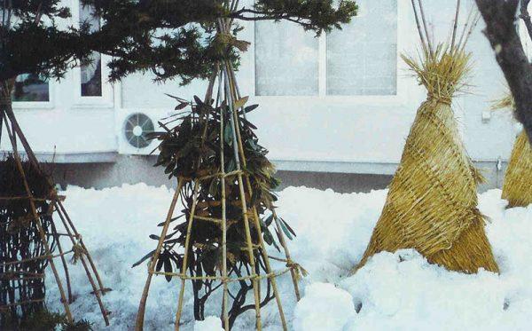 pod_zimu2
