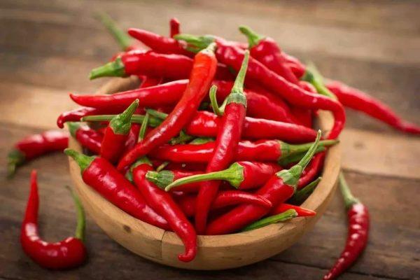 perchik-chili