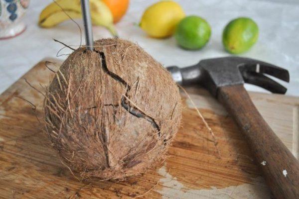 raskolot-kokos