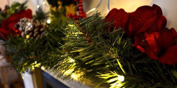 Картинки по запросу Что сделать из ёлки после праздников: 8 нестандартных решений