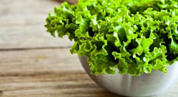 miniatyura-kak-doma-vyrastit-salat-na-vashem-podokonnike-750x410