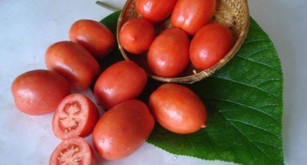 Томатные секреты. Как вырастить самые вкусные помидоры?