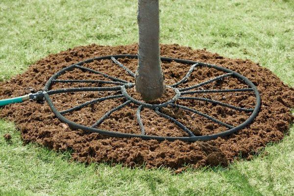 irrigation-10