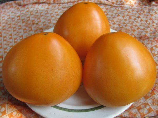 oranzhevye-tomaty-3
