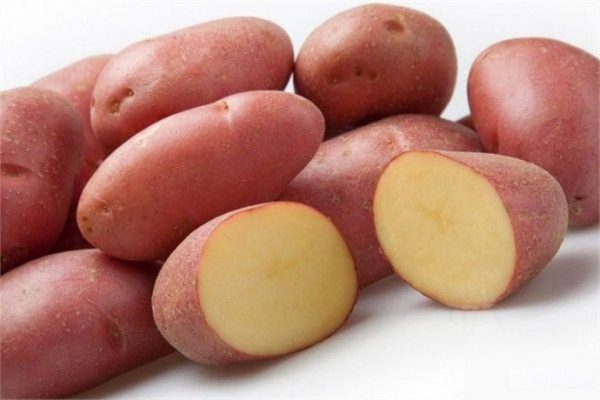 1-rannie-sorta-kartofelja