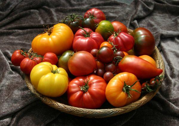 kakie-semena-tomatov-vyibrat-07