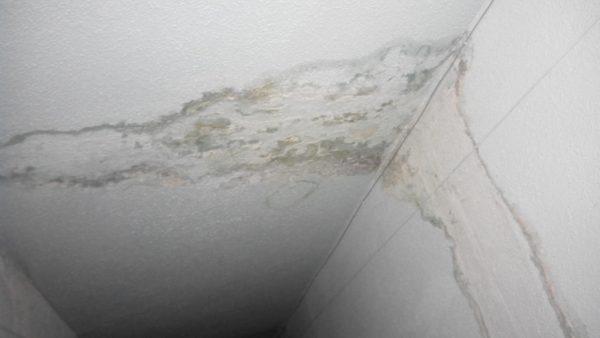 Картинки по запросу на потолке сильные подтеки