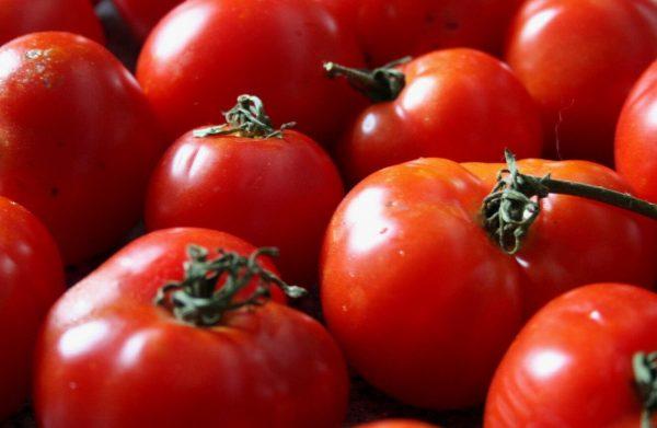 sorta-tomatov-44
