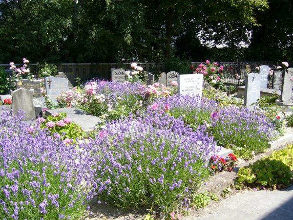 tombstone-flowers-03
