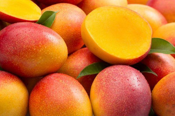 mango-na-sajt-1024x682