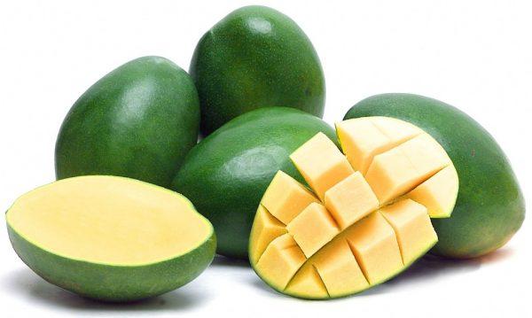 mango green keitt variety