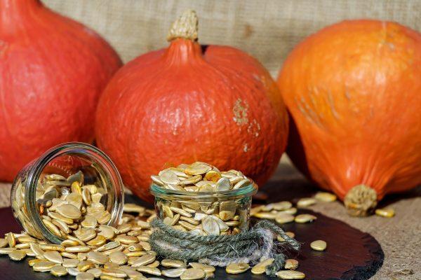 tild3864-3332-4137-a132-383432613739 pumpkin-seeds-173817