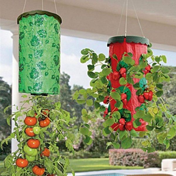 Upside-Down-Garden-Hang-Row-Seeds-Greening