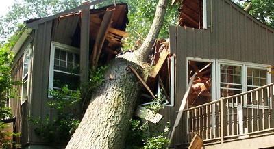 09tree-falls-on-house