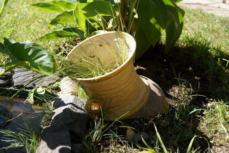 Картинки по запросу Сентябрьские заботы садовода – а вы готовы к концу сезона?