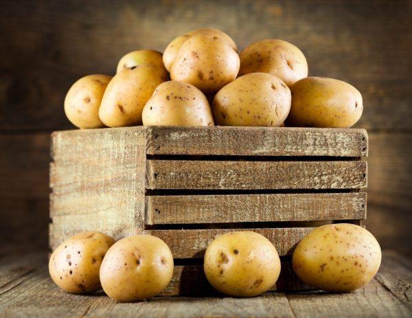 Pravila hraneniya kartofelya 7