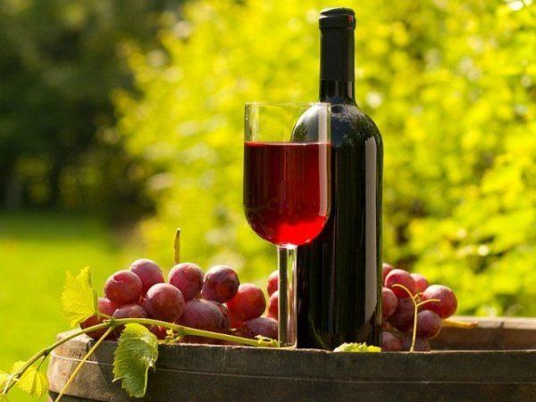 domashnee-vino-iz-vinograda-14-prostyh-retseptov-s-foto-8