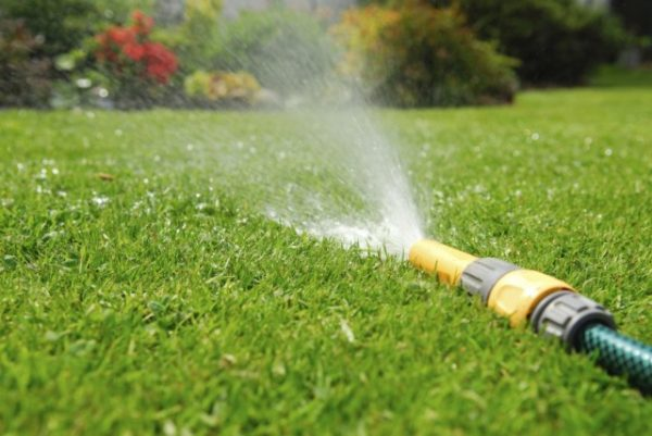 lawn-watering-1-640x428