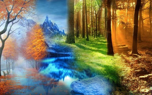 four seasons 1 1