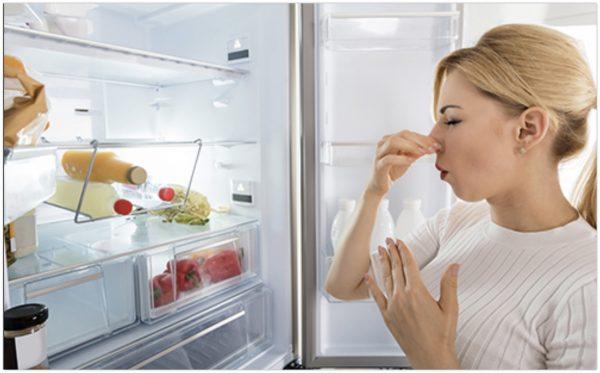 """Как избавиться от неприятного запаха в холодильнике – Газета """"Право"""""""