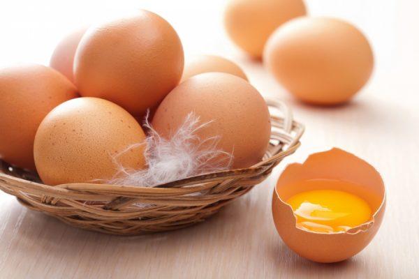 Куриные яйца с токсинами изымают по всей Европе - Русские Афины ...
