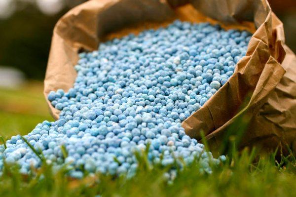 США открыли рынок для удобрений из Украины, – Минагрополитики (27.06.18  16:55) « Аграрный рынок | Бизнес.Цензор.НЕТ